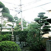 大阪府茨木市での剪定後画像その2